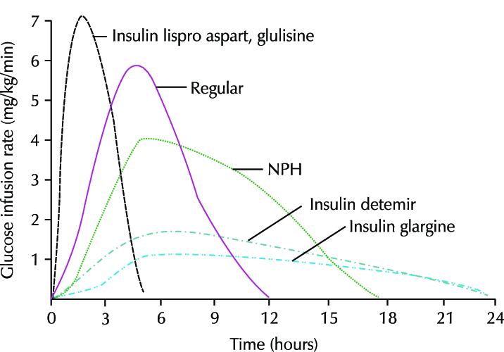 Different Types of Insulin